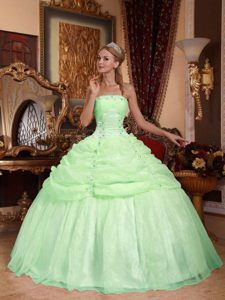 8de4543580f Buy latest green sweet sixteen dress with pick ups and appliques in organza  from green quinceanera dresses collection