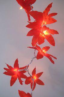 flores rojas en punta www.iluminadastres.com.ar