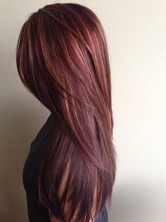 Chocolate Brown Hair With Caramel & Red Highlights