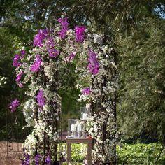 gartenlaube kletterpflanzen unterstützung struktur hochzeit
