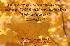 Mujeres que oran Decir No, Movie Posters, Movies, Thanks, Films, Film Poster, Cinema, Movie, Film