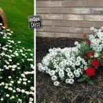 Un vase original dans le jardin! Voici 20 idées pour vous inspirer... Un vase original dans le jardin. Nous avons sélectionné pour vous aujourd'hui 20 idées créatives pour décorer votre jardin avec originalité. Laissez-nous vous inspirer avec ces 20...