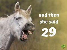 Funny happy birthday image with laughing horse. Happy Birthday Funny Humorous, Birthday Wishes Quotes, Funny Birthday Cards, Birthday Greetings, Birthday Memes, Birthday Ideas, Disgusting Pictures, Laughing Horse, Happy Anniversary Wishes