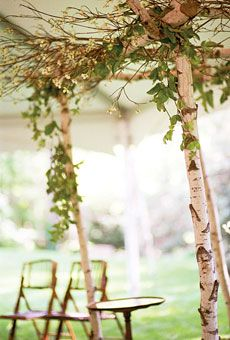 Arch of birch trees and accented with flowering dogwood branches Photo by Union Photography Flowers by KD Botanica #weddings   this makes the tent look very cool!