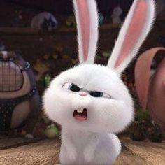 Rabbit Wallpaper, Bear Wallpaper, Cute Bunny Cartoon, Cartoon Pics, Cartoon Wallpaper Iphone, Cute Disney Wallpaper, Snowball Rabbit, Funny Rabbit, Cute Little Animals