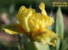 Iris PROPS
