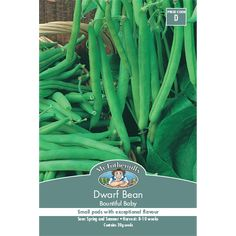 Mr Fothergill's Bountiful Baby Dwarf Bean Vegetable Seeds