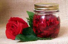 Las rosas han sido durante siglos un símbolo más del amor, la pasión y la seducción; pero más allá de eso, también han sido utilizadas por las propiedades que tienen para la piel, el cabello y la salud. En la actualidad, los extractos de rosas se incluyen en muchos productos comerciales, pero
