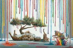 Color Play Artist: Michael Summers Fine Art Limited Edition Edition Size: 195 SN, 25 AP, 10 PP Size: 24 x 18 inches