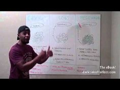 Leptin - Fat Loss for Smart People - Underground Wellness