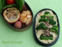 Japanese Bonsai Tree Bento of broccoli and beef | by Diana @ Bento Concept