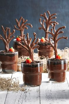 Spooky Forest Pudding Cups Recipe Halloween Treats treats pudding 55 Fun Halloween Snacks for Kids to Devour This October Halloween Desserts, Homemade Halloween Treats, Halloween Snacks For Kids, Hallowen Food, Halloween Cookies, Fall Desserts, Easy Halloween, Dessert Recipes, Spooky Treats