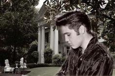 Graceland, omg,,thinking