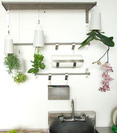 Plantenhangers met kruiden erin passen perfect in de keuken #kitchen #herbs