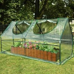 "Quictent New Mini High Quality 71""W x 36""D x 36""H Portable Green House Greenhouse Cloche"