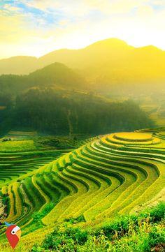 Abenteuer VIETNAM ruft #travel #vietnam #adventure