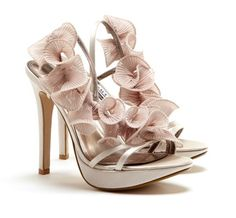Love this Analisa shoe, maybe a wedding shoe?!