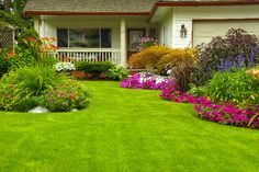 Learn how to avoid common mistakes when planting grass seed for a more full, lush, vibrant lawn. Home Landscaping, Front Yard Landscaping, Landscaping Company, Courtyard Landscaping, Florida Landscaping, Landscaping Images, Landscaping Blocks, Residential Landscaping, Inexpensive Landscaping