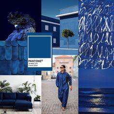 Pantone ha deciso: il Classic Blue è il colore del 2020 Color Of Life, Color Of The Year, Classic Blues, Pantone 2020, Color Azul, Color Theory, Pantone Color, Blue Fashion, Blue Wedding