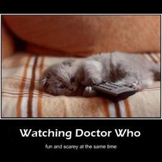 This makes me miss my Riley.... she always watched Doctor Who and Harry Potter with me