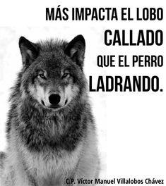 ... Más impacta el lobo callado que el perro ladrando.