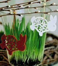 Pääsiäisruoho maljakkoon kasvamaan :)