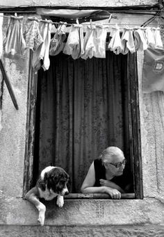 Old photo-love that the dog is looking out too.