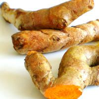 10 Uses for Fresh Turmeric (I just harvested a bunch of organic turmeric root from my garden. Looking for great ways to use it)