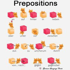 Prepositions! .. .. For more: Follow @germanlanguagecircle  Follow @germanlanguagecircle  Follow @germanlanguagecircle  Follow @germanlanguagecircle .. .. #germanlanguagecircle #prepositions #prepositionsingerman #präpositionen #deutschlernen #learngerman #maxmueller #goetheinstitut #goethe #languageteacher #deutschlernen #sprache #learnwithus #ich #auf #languages #languagestudy #deutschland #deutsch #learnathome #learninggermanisfun #learning #germanlearning #germanvocabulary #foreignlanguage # German Grammar, German Language Learning, Lokal, Learn German, Future Career, Feeling Happy, Give It To Me, Germany, Place Card Holders