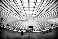 Aan de slag met lijnen | DIGIFOTO Starter