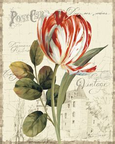 Garden View II - Red Tulip Prints by Lisa Audit at AllPosters.com