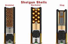 Some shotgun hunters want to know what the shotgun drop is for their respective shot shells. Weapons Guns, Guns And Ammo, Rifles, Home Defense Shotgun, Shotgun Slug, Pump Action Shotgun, Tactical Shotgun, Hunting Guns, Firearms