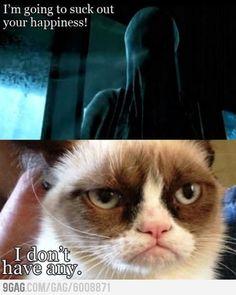 Grumpy cat strikes again.haha Harry Potter and Grumpy Cat.dementors can kiss his grumpy butt Grumpy Cat Quotes, Funny Grumpy Cat Memes, Cat Jokes, Funny Cats, Funny Animals, Cute Animals, Funny Memes, Grumpy Cat Images, Angry Cat Memes