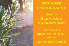 This is a short video showing quick tips on how to blur the background in your image to make the subject stand out. you don't need to know manual settings or have a fancy camera to do this you just need to understand a few simple things . #photographytips #photographylessons #blurbackground #blur #photography #tips #education #photographyskills #photographyhacks Blur Photography, Photography Lessons, Photography Tips For Beginners, Blurred Background, Simple Things, Your Image, Need To Know, Manual, Fancy