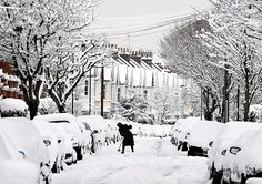 In pictures: Winter weather, Snowy street London Snow, London Winter, London City, West London, Winter Pictures, Old Pictures, History Of England, London Pictures, England Fashion
