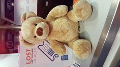 Found on 18 Aug. 2015 @ Manchester Piccadilly . Build a bear teddy bear found on the tracks, dropped between platform and train Visit: https://whiteboomerang.com/lostteddy/msg/pnfpyz (Posted by Jonathan on 27 Aug. 2015)
