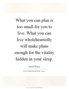 What you can plan is too small for you to live. What you can live wholeheartedly will make plans enough for the vitality hidden in your sleep Picture Quote #1
