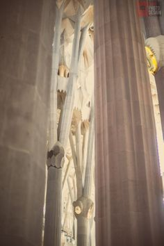 Interior - Sagrada Familia - Barcelona -  Spain - daniphotodesign.com