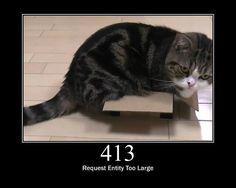 HTTP Status Cats, HTTP Status Codes Displayed Using Cat Photos