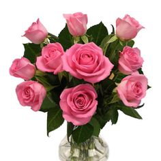 Are you confused about best mothers day flower? Why not you send this cute pink rose #flower to your mom.