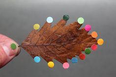 leaf with colorful polka dots Sabine Timm