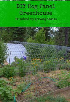 greenhouse hog panels how to, diy, gardening