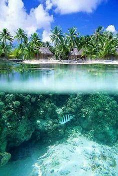 White beach paradise