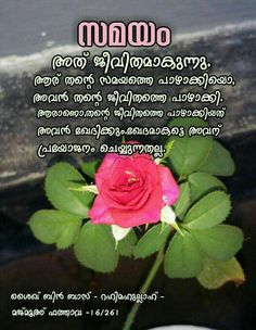 Red rose pictures with love quotes in malayalam viewsitenew love of photo red roses greetings malayalam m4hsunfo