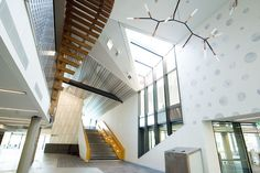 Gallery - Margaret Court Arena Redevelopment / NH Architecture + Populous - 10