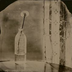 """4x4"""" Wet Plate Collodion Tintype by: Angie Pember Brockey"""
