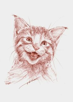 ARTFINDER: Lucky by Maga Fabler - Cat Face Expression series.  Sanguine conte on paper.  Suggested framing on 2nd picture.
