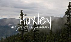 Huxley - baby boy name!
