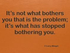 Larry Winget Quote - it's not what bothers you that is the problem
