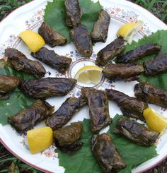 Cooking with wild grape leaves.